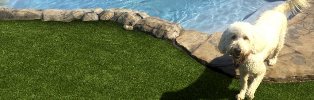 artificial turf for pools