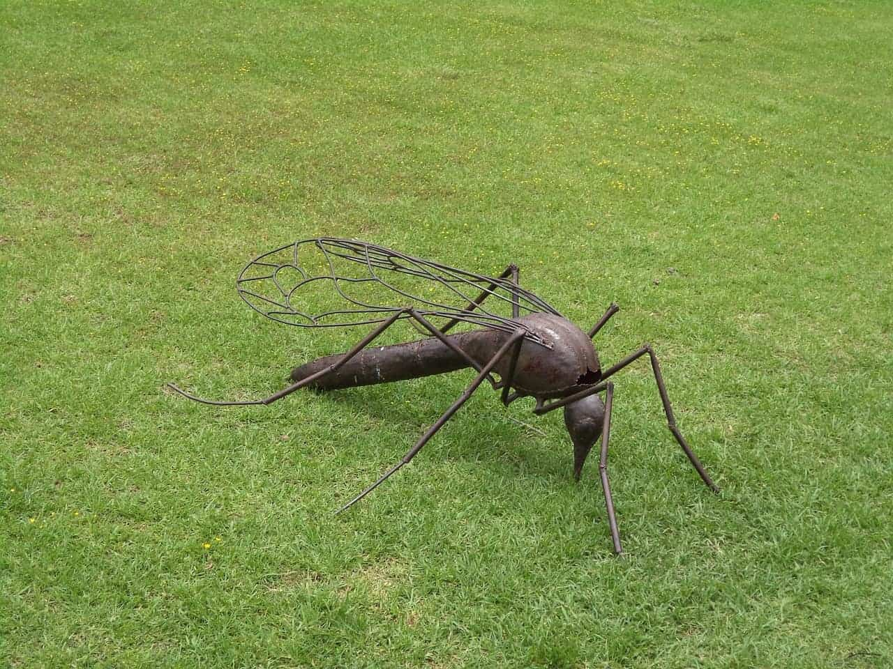 eliminate more pests with artificial turf